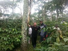 Kaffeeplantage#Louis und Andreas