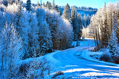 MY FROSTY WORLD (Aspenbreeze) Tags: road winter snow mountains cold ice rural colorado frost hoarfrost freezing grandmesa mountainroad grandmesacolorado aspenbreeze moonandbackphotography bevzuerlein