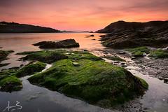 Porth Beach Newquay (sachman75) Tags: uk longexposure sunset england seascape beach coast moss rocks europe cornwall unitedkingdom newquay coastal headlands canon1740mmf4 porthbeach sonya7r