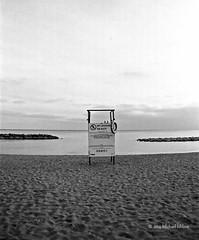 20151205 TOPW-BEE  Beach