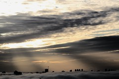 IMG_9038 (TheMummy'sEye) Tags: fog vancouver sunrise godlight