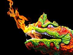 The Fierce Dragon (floralgal) Tags: dragon amusementpark amusementride ryenewyork playlandparkryenewyork colorfuldragon fiercedragon westchestercountynewyorkamusementpark dragonamusementparkride vintagedragonmodel 1927playlandparkryenewyork