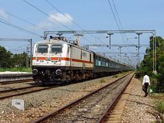 Chennai Mail Superfast Express (Jayfotographia) Tags: india kerala southernrailway indianrailways thiruvananthapuram electriclocomotive 12624 kochuveli wap7 12624chennaimailsuperfastexpress 3phaseelectriclocomotive icfcoaches chennaimailsuperfastexpress cbccoupling