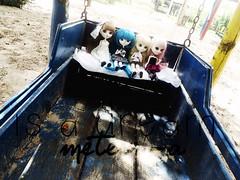 Edições (Meteor-a) Tags: cute doll luna louise kawaii pullip anahi effect freya hatsune merl miku minzy kirakishou