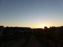 Orange County 2014-11 (154) (Numan) Tags: california vacation sunsets vineyards temecula wilsoncreekwinery