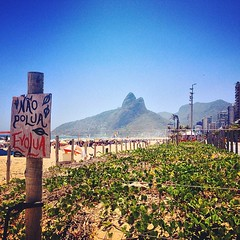 Do not pollute, Evolve! (Fioriii) Tags: brazil sun sol praia beach nature rio mobile riodejaneiro square sunny squareformat celular rise ipanema 4s evolve iphone coqueirão iphoneography instagramapp uploaded:by=instagram iphone4s foursquare:venue=4b439dfdf964a52074e425e3