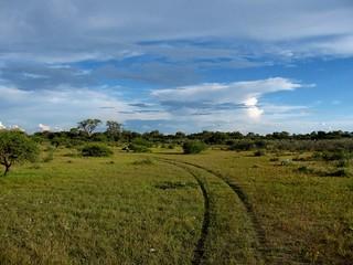 Botswana Hunting Safari 23