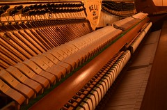 3/365 ~ Piano (Kenny2221) Tags: musician music keys piano instrument classical strings bellpiano