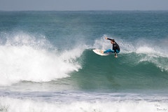 Birds-17.jpg (Hezi Ben-Ari) Tags: sea israel surf haifa backdoor  haifadistrict wavesurfing