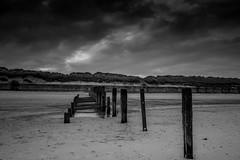 I I I I (Susie Potter) Tags: wood blackandwhite beach sand decay norfolk groyne