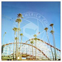 CALIFORNIA-54