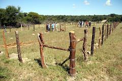 Nywana E Kgolo Emergency drought mitigation