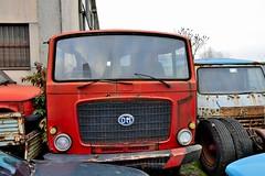 OM titano T (riccardo nassisi) Tags: auto car truck rust fiat rusty collection camion scrapyard wreck scrap piacenza lancia collezione politi abbandoned abbandonata