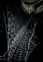 Spider cob 1 (Rikke Roger Reif) Tags: winter blackandwhite bw ice nikon hoarfrost icecrystal winterday spidercob nikond600