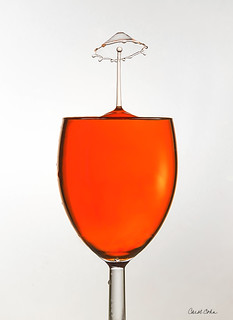 _12A5404-Umbrella-in-Wine-Glass