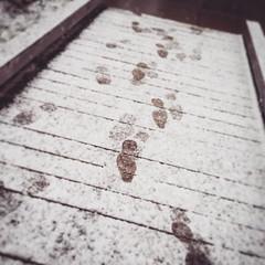 Footprints (Karol A Olson) Tags: snow cold dc washington footprints noma jan15