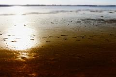 (michael_hamburg69) Tags: feet beach strand germany deutschland foot spring may spuren balticsea ostsee footprint schleswigholstein laboe 2016 spurenimsand fusabdruck diesonnenseitederkielerfrde awalkwithandy