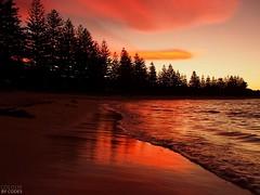 South Durras NSW Australia (P5030998) (colourbycodes) Tags: plants nature landscapes seascapes silhouettes australia places nsw beaches eurobodalla