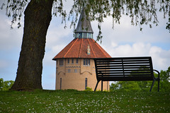 In the park (Maria Eklind) Tags: park city flowers summer flower green colors leaves se spring europe sweden outdoor sverige malm pildammsparken skneln
