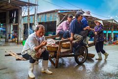 IMG_0167 Phuoc Hai Fishing Village 0616 (HUONGBEO PHOTO) Tags: canoneosm3 vũngtầu ngưdân longhải làngchài fish relax streetlife fishingvillage outdoor