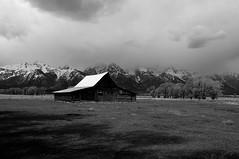 GTY_0152 (Kerri M.) Tags: wyoming grandtetonnationalpark mormonrow barns nationalparks tetonrange tetons