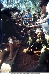33663513fall_20010630_12892.jpg (ngao5) Tags: camp rescue hospital war ship south wounded captured full vietnam communist conflict soldiers helicopters length injured civilians