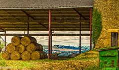Campagne, hangar  paille. (Crilion43) Tags: arbres france vreaux paysage ciel centre herbe paille divers canon cher arbre branches foin nature nuages rflex sapin thuya