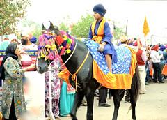 Nihang Singhs (Jaswinder Chohan,.) Tags: nihangs singh sikhs panjab india punjab travel