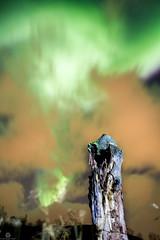 Northern Light Explosion (Jan-Roger Olsen) Tags: 2015 2015october auroraborealis dark green harstad longexposure natt natur nature night nordlys norge northernlight norway october oktober outdoor stars tripod troms no