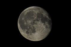 shoot the moon 232/366 (dawn.v) Tags: shootthemoon moon afterdark poole dorset uk england august 2016 fullmoon nikon 366daysin2016 2016yip