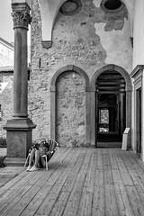 Sink into reading... (drugodragodiego (Thanks 1,9 Million)) Tags: monasteri architecture bergamo lombardia italy blackandwhite blackwhite biancoenero bw people pentax pentaxk1 k1 hdpentaxdfa2470mmf28edsdmwr pentaxiani