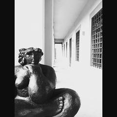 Villa Caruso Bellosguardo (Photo/Graphic) Tags: instagramapp square squareformat iphoneography uploaded:by=instagram lark villa caruso bellosguardo