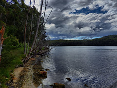 Lakeside VI (elphweb) Tags: hdr highdynamicrange lake lakeside waterway trees tree forest bush australia nsw water coastal sky cloudy skies
