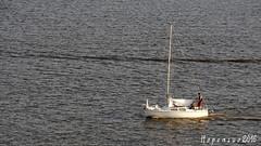 Small boat in Turku archipelago (Hopeasuo) Tags: turku suomi finland summer sea archipelago