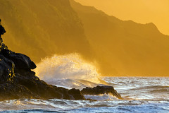 golden VIII (IanLudwig) Tags: canon photography hawaii kauai hawaiian beaches tog togs niksoftware hawaiiphotos vsco cep4 canon5dmkiii hawaiianphotography 5dmkiii canon5dmarkiii ianludwig canon70200mmf28lisusmii lightroom5 canon2xtciii adobephotoshopcc