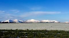 First covering of snow on the pentland hills (Edinburgh) (poach01) Tags: winter snow mountains scotland edinburgh frost december frosty hills fields pentlandhills iphone pentland scottishwinter iphone6
