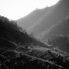 (pitchayath) Tags: leica blackandwhite bw square landscape m8 chiangmai bnw leicam8 zeiss35mmf2biogon