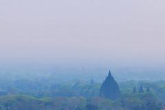 Misty Prambanan