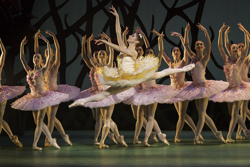 Ballet in Bloom: The Flower Waltz