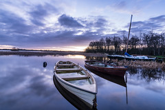 Good morning (qgrainne) Tags: blue trees ireland winter light sky sun lake reflection nature water clouds sunrise reflections reeds boats boat lough december hour catamaran rowing 2014 dockbay ennell