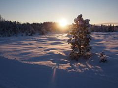 Winter 2014!