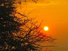 Diamond Head Sunrise (macprohawaii) Tags: sunrise hawaii diamondhead honolulu canons5is