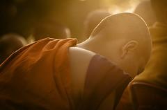 Buddhist Sunrise (Greg - AdventuresofaGoodMan.com) Tags: sunrise thailand asia humanity buddha religion monk buddhism celebration chiangmai procession devotee alms lordbuddha charoenmuang internationalalmsprocession 12999monkprocession theinternationalalmsofferingceremony