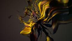nova_16 (James Alliban) Tags: code experiment animation bioluminescence slitscan openframeworks