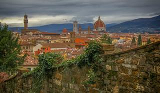 Florence Overlook