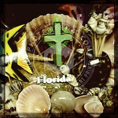 FLORIDA-293