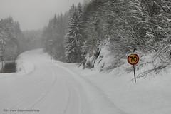 20150122069851 (koppomcolors) Tags: winter vinter sweden sverige scandinavia värmland varmland koppom skillingmark koppomcolors