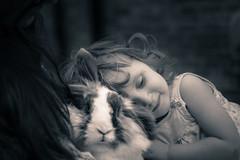 Bunny Love (jayneboo) Tags: rabbit bunny love child emotion champion granddaughter norah odc