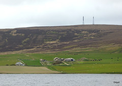 Groundwater Farm And Keelylang Hill (orquil) Tags: uk greatbritain house lake green water grass rural buildings islands evening scotland spring interesting orkney view cattle sheep farm heather hill may calm summit fields bracken openspace livestock masts isolated foreground oldcottage groundwater tvbroadcast orcades orphirparish lochofkirbister keeleylang