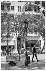 Plaza De Armas (Samy Collazo) Tags: plaza bw 1955 canon kodak streetphotography bn aviary plazadearmas lightroom kodaktrix400 kodakd76 fotografiacallejera industar2250mmf35 lightroom3 epsonperfectionv500scanner niksilverefexpro2 canonlld2